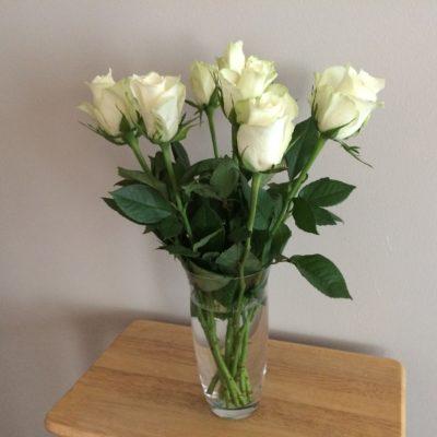 bursdag roser